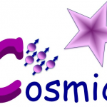 Welcome to the COSMIC website!